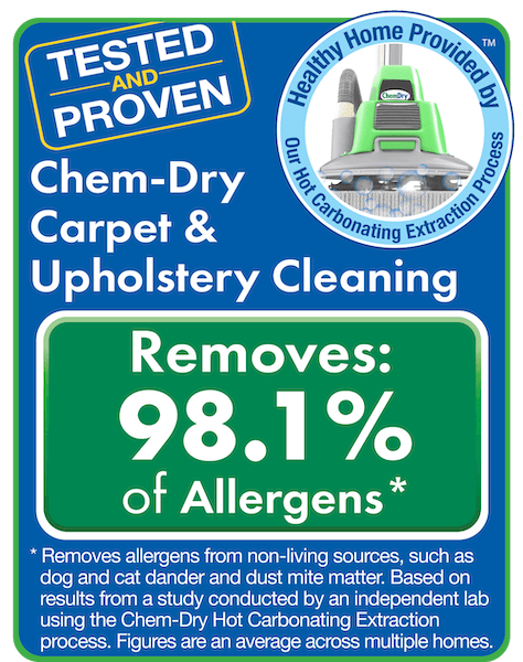chem dry removes allergen test results san fernando