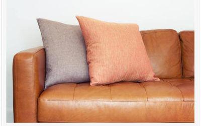 Leather Furniture Care