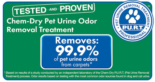 chem-dry removes 99.9% of odor and 99.2% of bacteria from pet urine