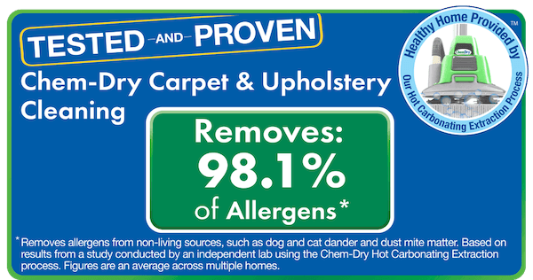 chem dry removes 98% of allergens and 89% of bacteria