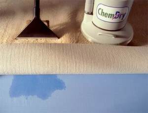best carpet cleaning Los Angeles